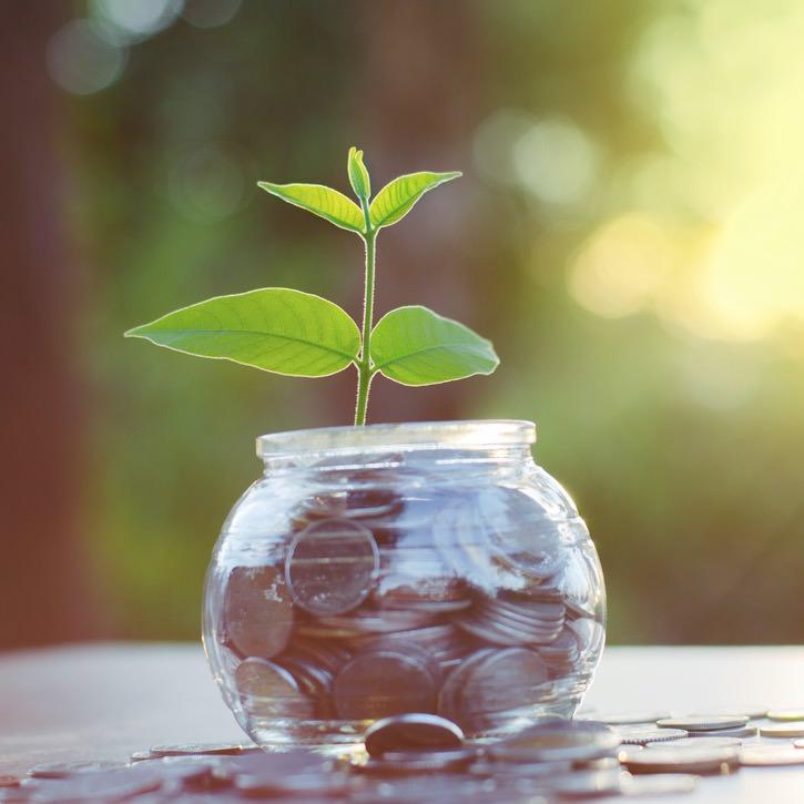 money-growing